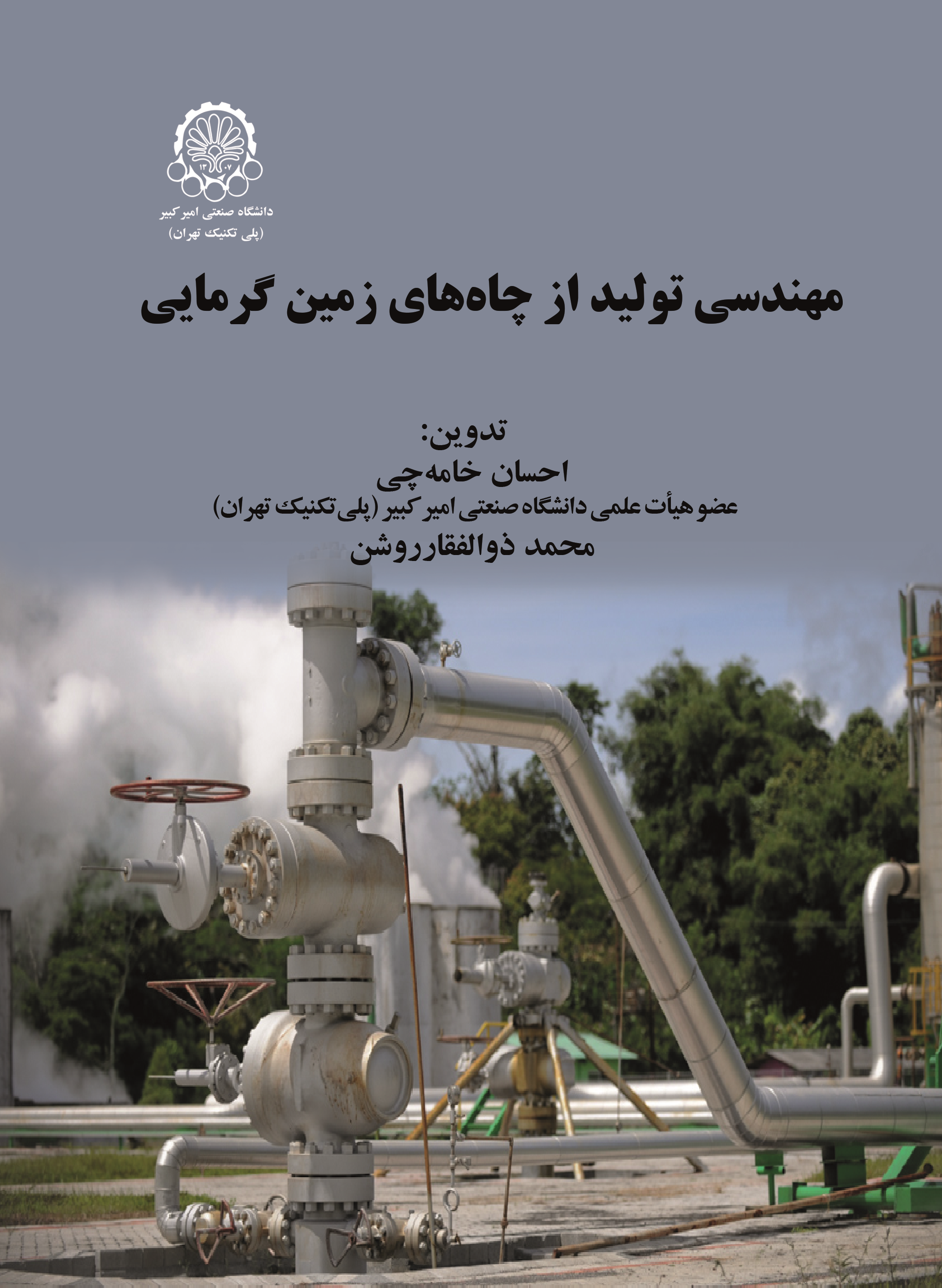 Production Engineering from Geothermal Wells